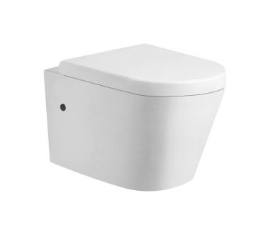 Ollie Rimless Wall Hung Pan Toilet Suite>